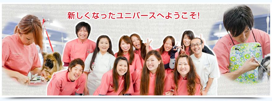 トリマー養成専門の学校ユニバースグルーミングスクール/大阪京橋駅下車 歩6~13分