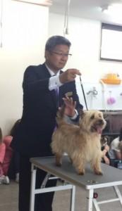 糸井先生とナッツ